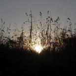 Ein Traum von Morgen auf dem Tristen Kopf (1.741m)