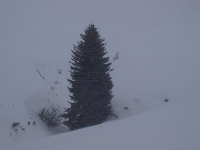 Aktueller Blick auf die Schneelage in den Skigebieten