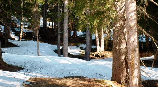 Gewinnspiel: Natururlaub in Vorarlberg gewinnen