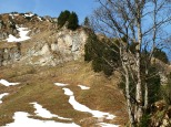 Winterstaude - Schetteregg