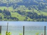 Großer Alpsee - Immenstadt