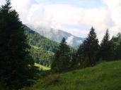 Hoch Häderich - Blick in den Vorderen Bregenzerwald