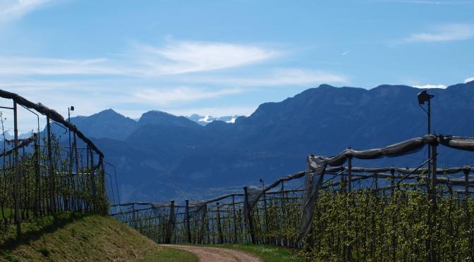 Wetterprognose Berge In Vorarlberg Streifzug Durch Die Berge