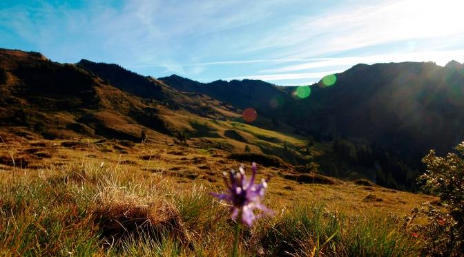 Es herbstelt … Eindrücke vom Herbst in den Bergen