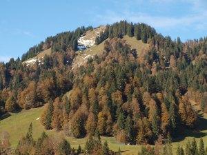 Schönenbach - sanfte Berglandschaft