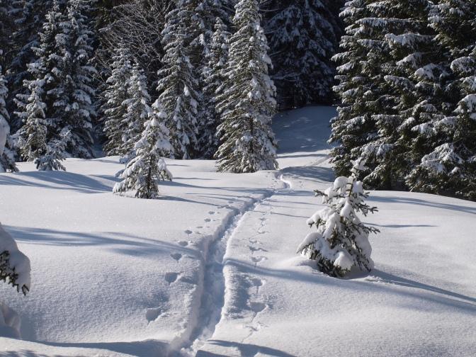 Die günstigsten Skigebiete in Vorarlberg