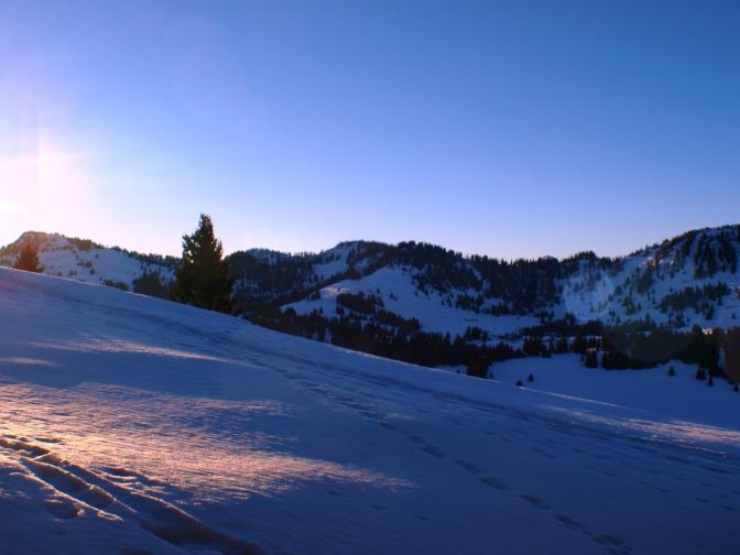 Skifahren, Skitouren: wo kann man derzeit Wintersportvergnügen erleben?