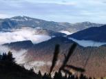 Hirschberg - Schnepfegg - Blick ins Tal