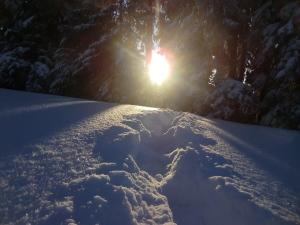 Pfänder im Winter