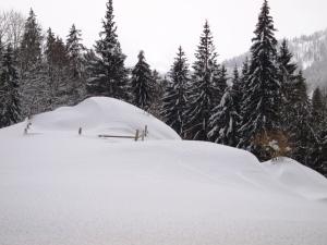 Lecknertal im Winter