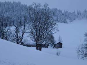 Tief verschneite Winterlandschaft