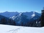 Blick zu den schweizer Bergen