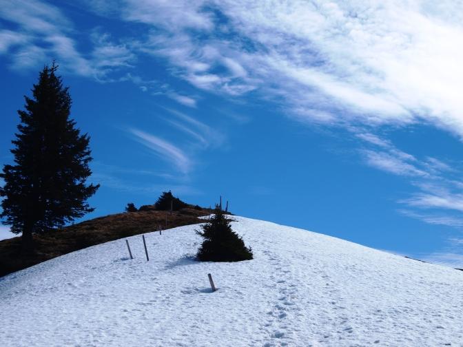 Auftakt in die Wandersaison – Besler (1.679m) und Beslerkopf (1.668m)