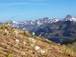 Blick ins Bregenzerwald Gebirge